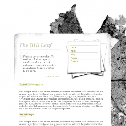 the_big_leaf_template_1169