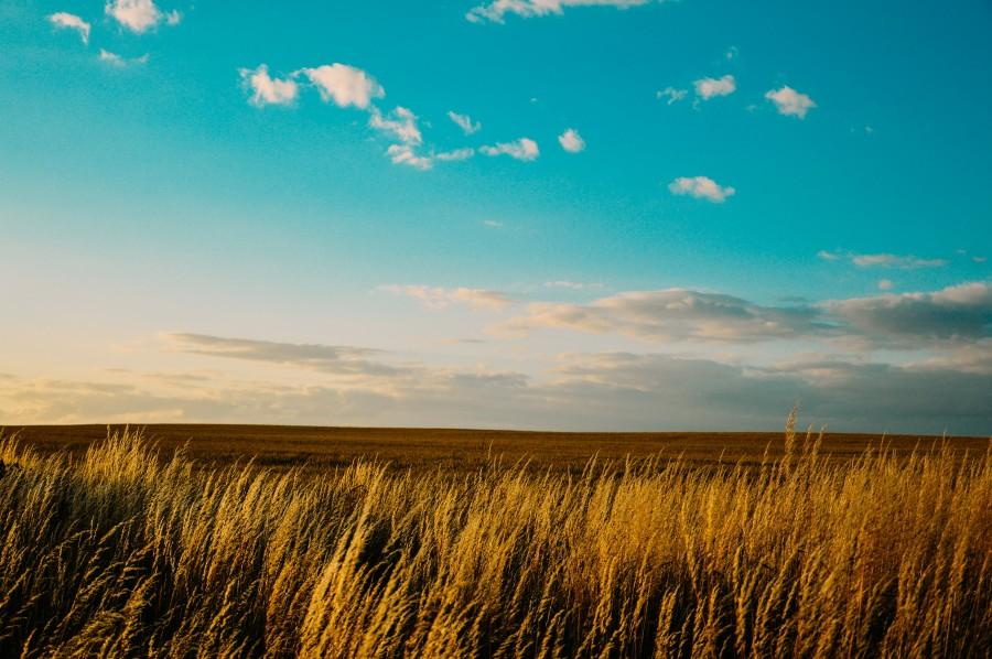 Resultado de imagen para fotos tumblr paisajes