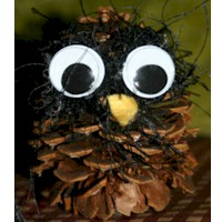 Image of Wise Guy Owl Pine Cone Craft