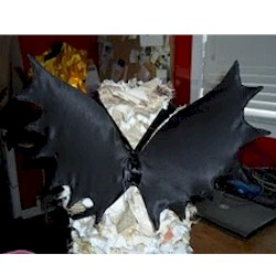 Image of Bat Wings