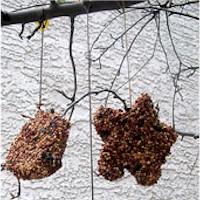 Image of Easy Bird Treats