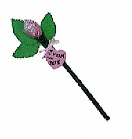 Image of Valentine Candy Rose