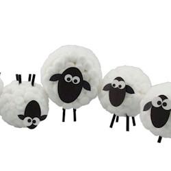 Image of Cottonball Sheep