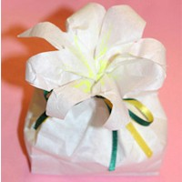 Image of Easter Lilly Treat Bag