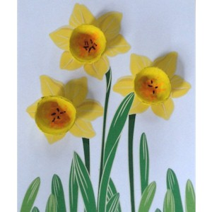Image of Egg Carton Daffodils