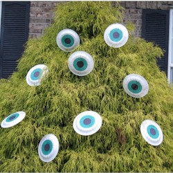 Monster Eye Decoration