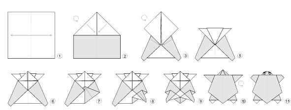 Sea Turtle Diagram Schematic Diagrams