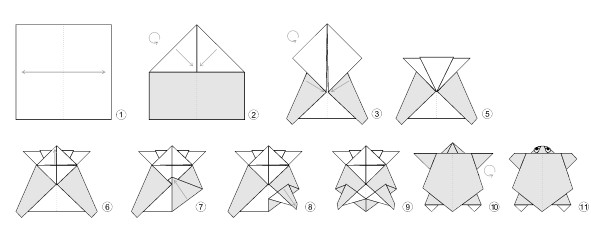 Origami Turtle Diagrams Find Wiring Diagram