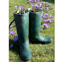 Image of Planting Wellies
