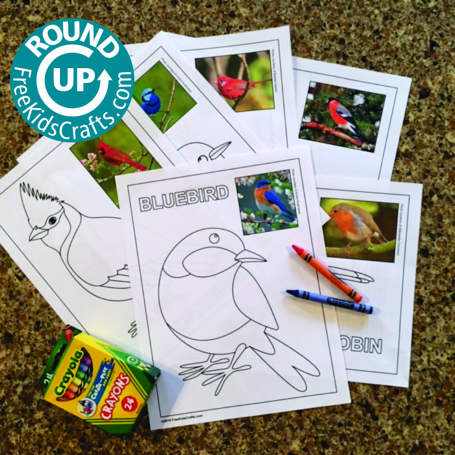 Image of Roundup of Bird Crafts for Young Children