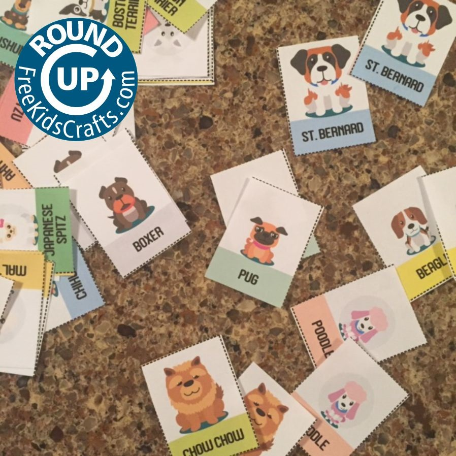 Roundup of Pet Crafts and Activities
