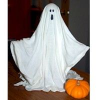 Image of Stiffened Fabric Ghost