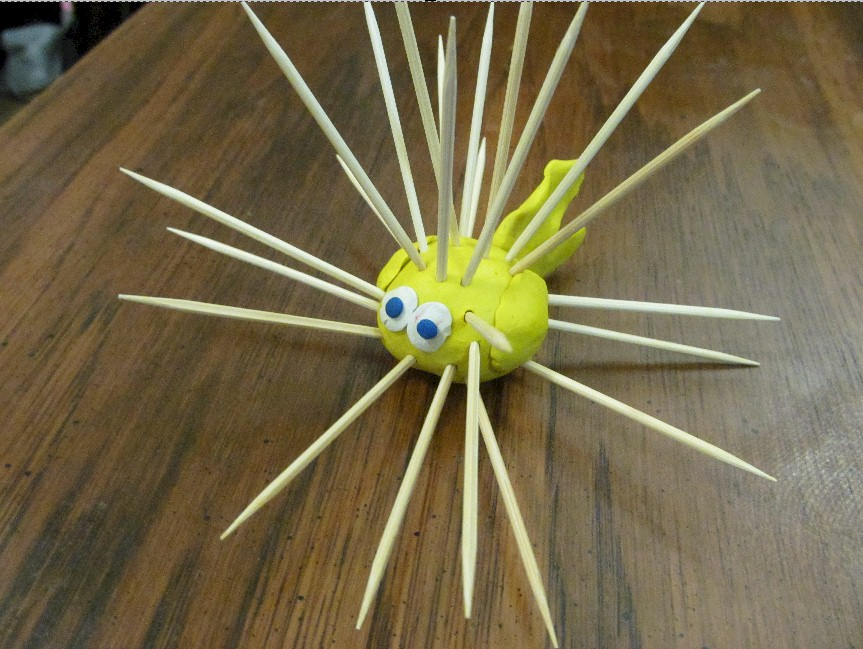 Image of Toothpick Puffer Fish