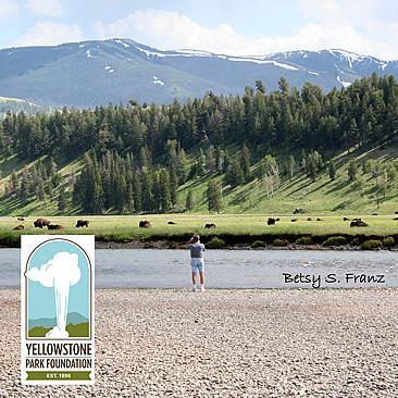 Yellowstone Park Foundation
