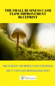 THE SMALL BUSINESS CASH FLOW IMPROVEMENT BLUEPRINT