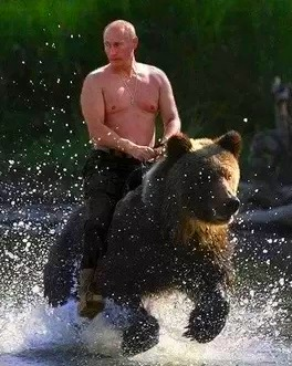 Putin Riding Bear, commons.wikimedia.org