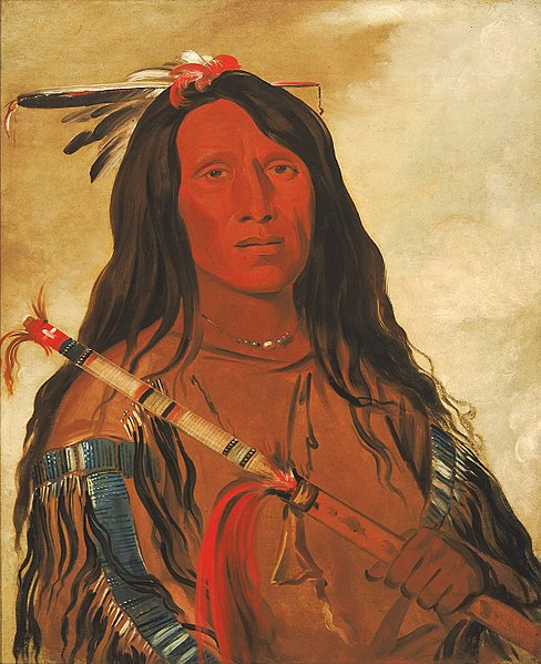 Né-hee-ó-ee-wóo-tis, Wolf on the Hill, Chief of the Tribe by George Catlin, Smithsonian American Art Museum