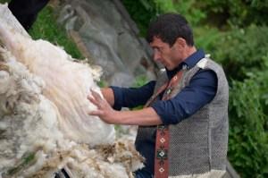 Zpracování ovčí vlny, foto Winnet Armenia