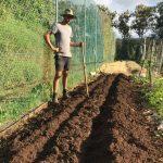 ploughing new organic garden beds