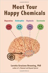 Meet Your Happy Chemicals Book Pdf Free Download