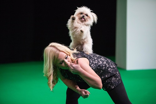 Winner - Strictly Doggy Dancing - Trip and owner Lucy Heath - SuperDogs Live at London Pet Show 2015 sponsored by Gocompare.com