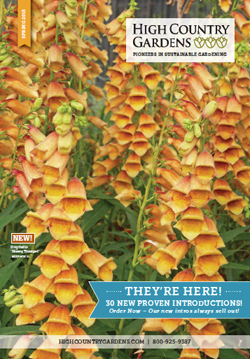 HighCountryGardens-catalog-cover-dropA-2015-01