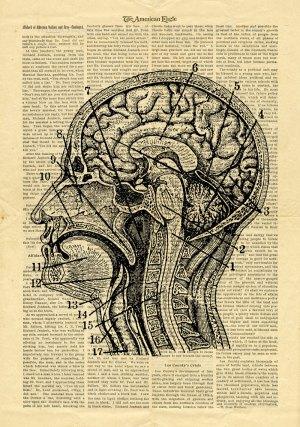 brain-paper