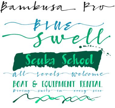 2xrs-bambusa-pro-01
