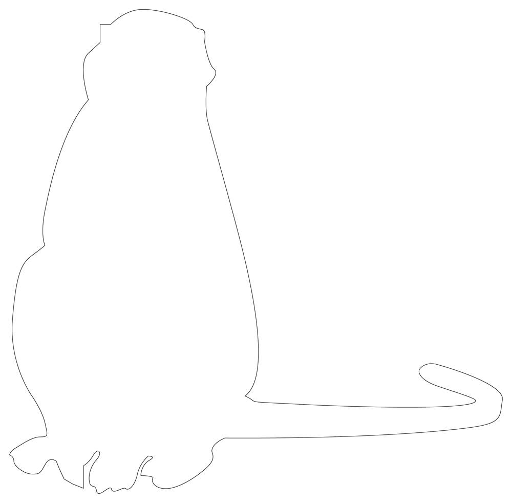 Monkey Outline Clever Monkey Line Drawing
