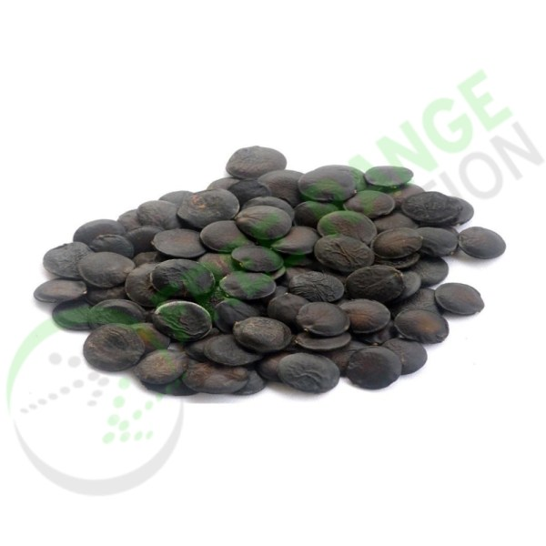 Griffonia Seed Extract (5HTP)