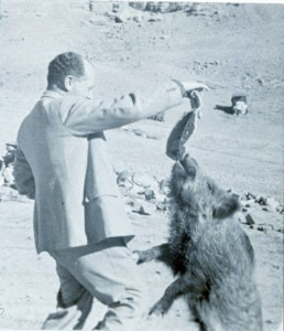 Ernst Herzfeld and Bulbul, his pet boar; Iran, ca. 1933; silver gelatin print; Ernst Herzfeld Papers, FSA A.6 04.5.3.65c