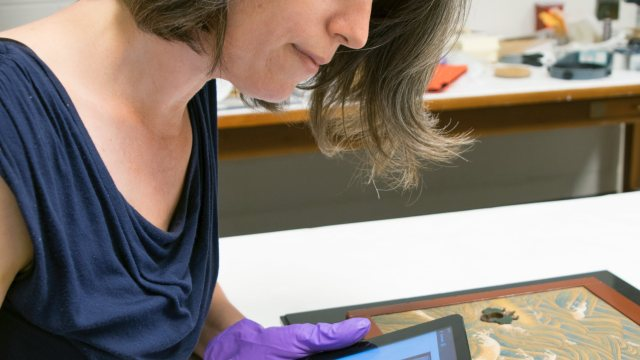 conservator wearing purple gloves holding an iPad and examining a painting