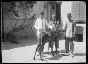Sevruguin, Antoin,; b&w ; 17.9 cm. x 12.8 cm.; Myron Bement Smith Collection: Antoin Sevruguin Photographs. Freer Gallery of Art and Arthur M. Sackler Gallery Archives. Smithsonian Institution, Washington D.C. Gift of Katherine Dennis Smith, 1973-1985
