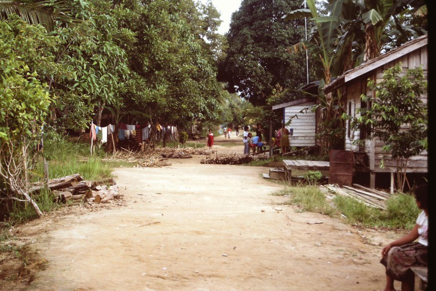 A dirt road fades into the horizon with forest on the left and longhouses on the right, dotted with people walking along the road.