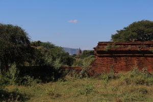 A stupa top seen from behind a damaged brick wall in scrub-forest