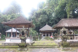 Overgrown temple complex