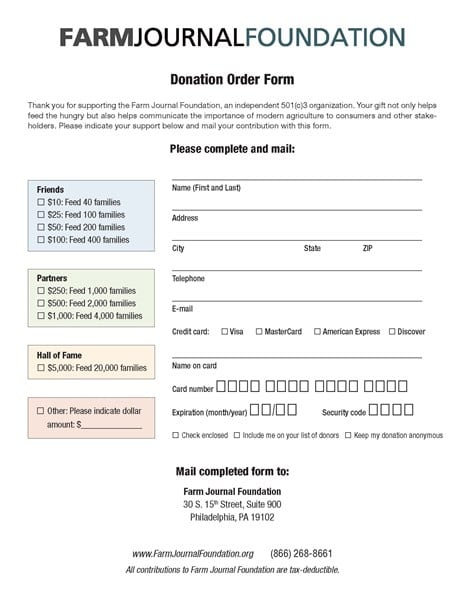 Charitable Donation Form Templates  Formats Examples In Word Excel