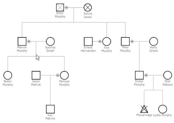 6 Genogram Templates - formats, Examples in Word Excel