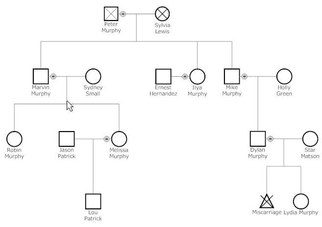 6 Genogram Templates Free Sample Templates