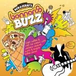 ben-and-jerrys-bonnaroo-buzz