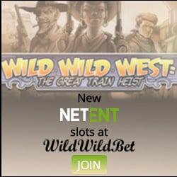 Wild Wild Bet Casino banner 250x250