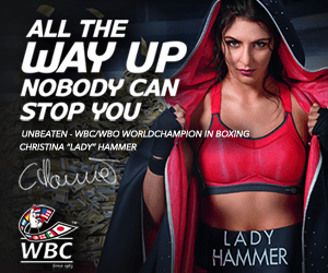 [Image: Lady-Hammer-Casino-banner-300x250.png?fi...C250&ssl=1]