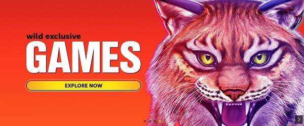 Exclusive Bonuses and Games Online