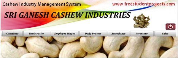 cashew software