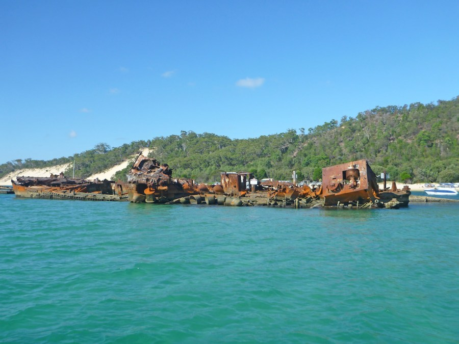 Great snorkelling at the Tangalooma wrecks