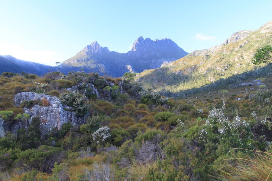 On route to the base of Cradle Mountain
