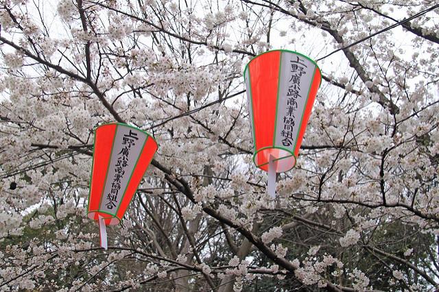 Celebrations in Ueno Park