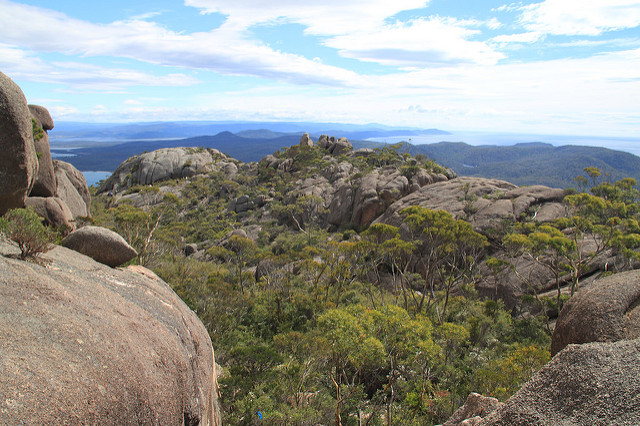 Another view from Mt Amos