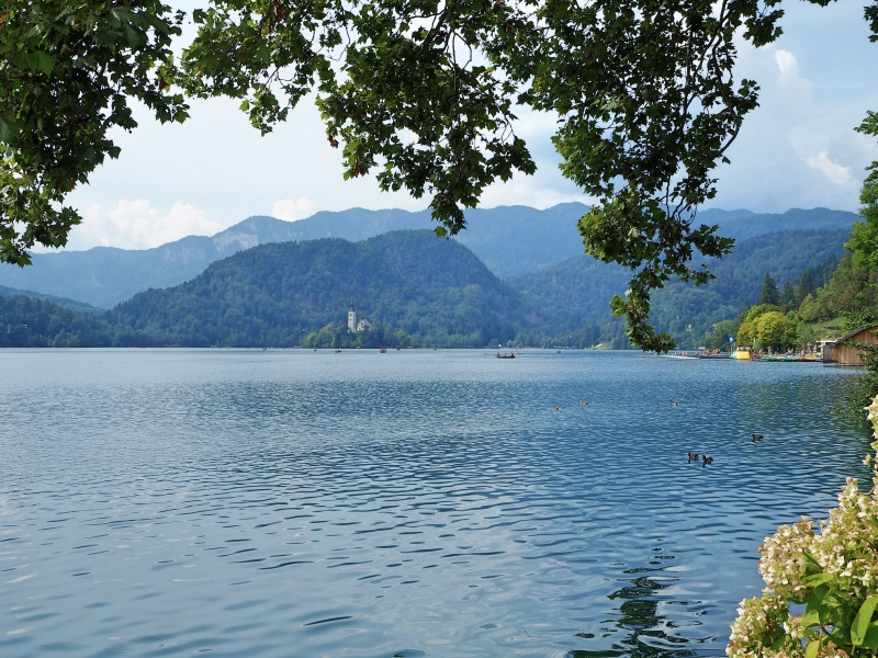 The small Bled island in the middle of the lake is visible from everywhere around the circumference of the lake.
