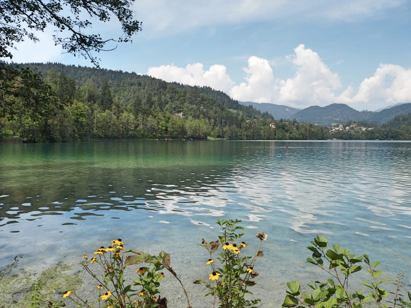 More views of the lake!
